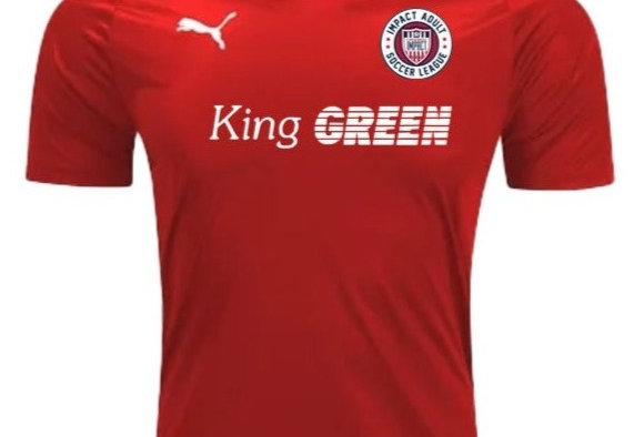 Adult League Official Match Jersey-Red