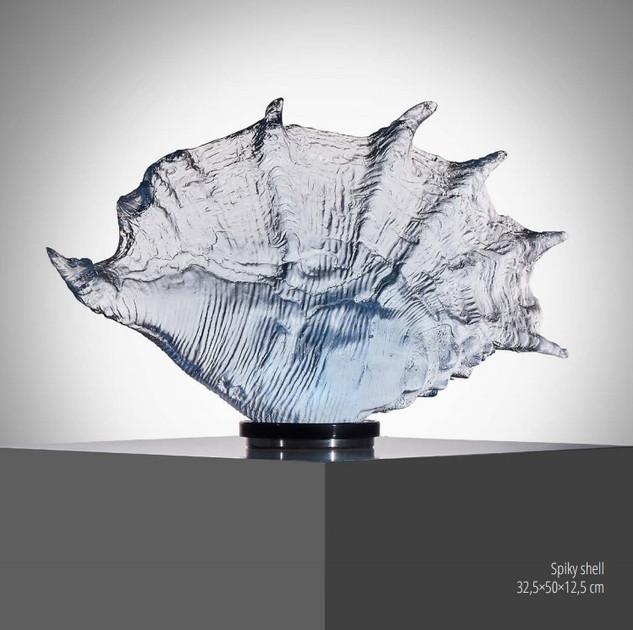 Spiky Shell
