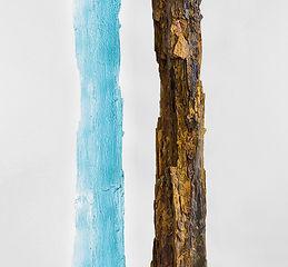 Michaela_Smrček_TREE_FOSSIL_blue.jpg