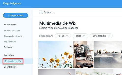crear web gratis con wix