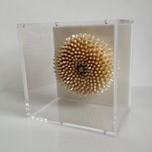 cristian-lanfranchi abstract contemporary art bijoux bagel BijouxBagelBox #11