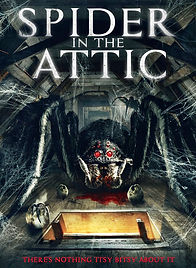 SPIDER In The Attic.JPG
