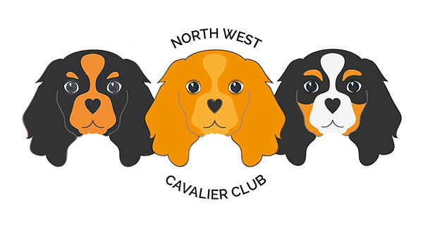 cavalier-club-options.jpg