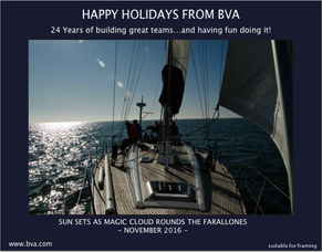Happy Holidays from BVA