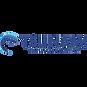 tsunami logo.png