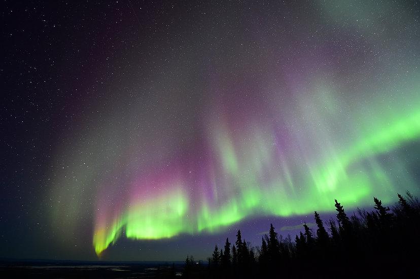 Alaska Lights