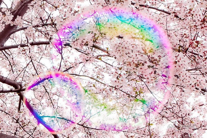 Bubbles_016