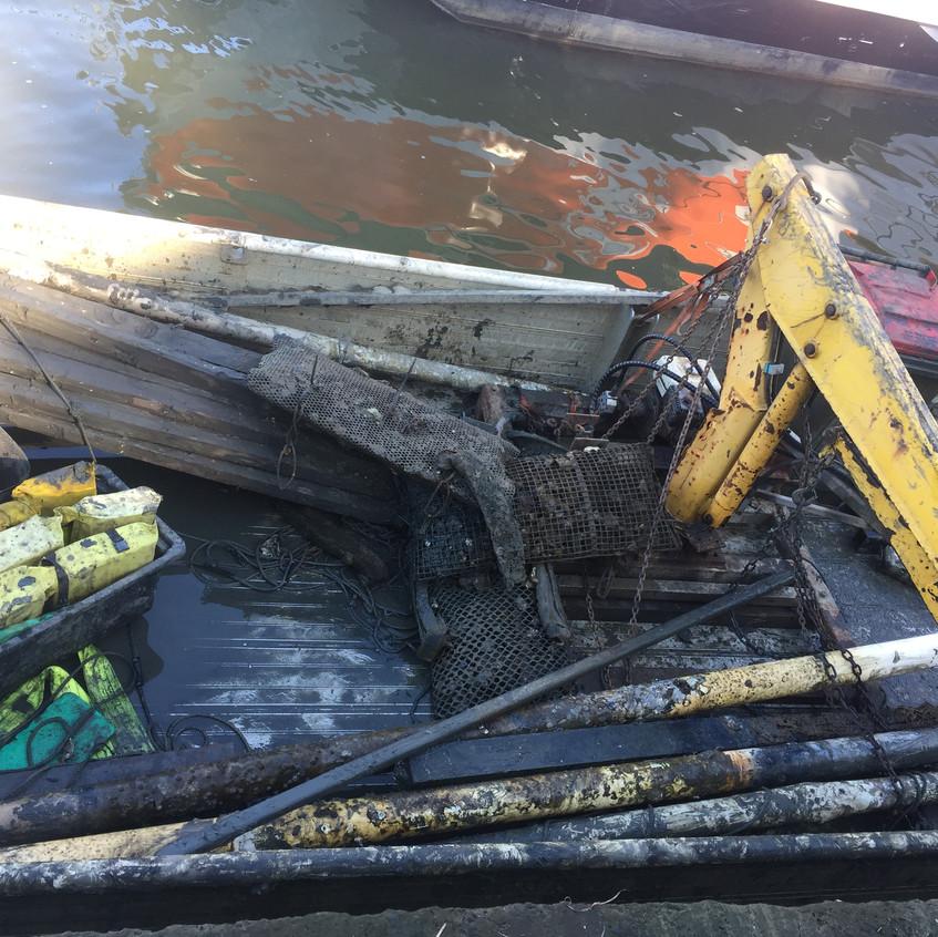 catch a crab oyster farm restoration 2