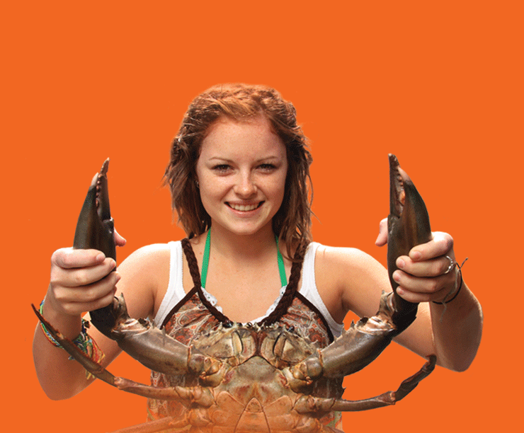 Catcha Crab Tour