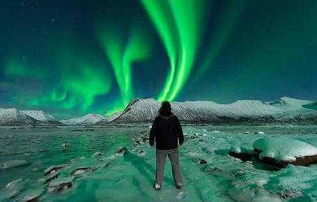 Northern Lights | Wildlife | Norway | Vesterålen Tours | Private guide