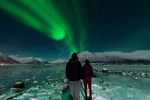 Northern Lights | Wildlife | Norway | Vesterålen Tours | Private guide