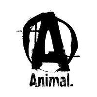 Animal.jpg