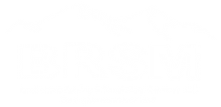 BRSM Logo White with wordmark.png