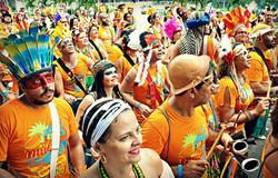 Carnaval 2015 13
