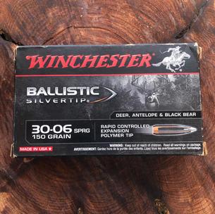 Winchester BallisticTip 30-06 $38.99