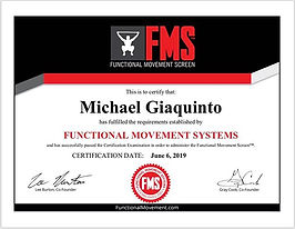 Just became FMS certified! This will hel
