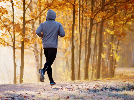 Советник от Малина Бора: Утренняя пробежка. Часть 2