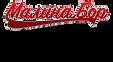 Logo 3 2м.png