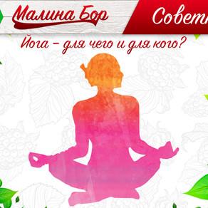 Советник от Малина Бора: Йога – для чего и для кого?