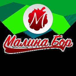 Logo_3_м.png