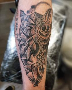 Splitface owl