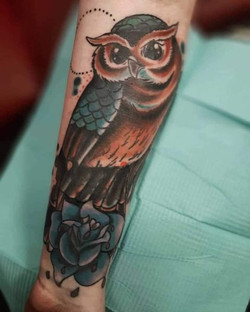 owl coverup2