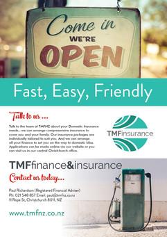 Domestic Insurance Flyer