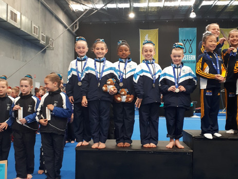 WAG Level 3 Junior Victorian Championships