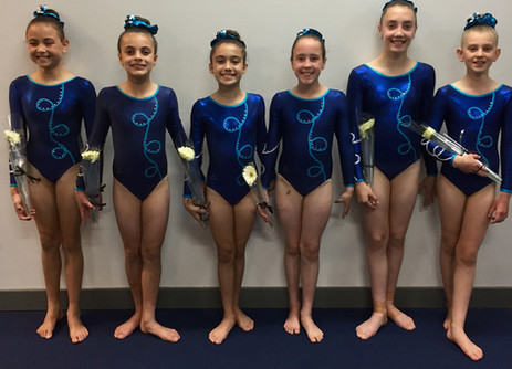 Level 4's Excel at Junior Victorian Championships
