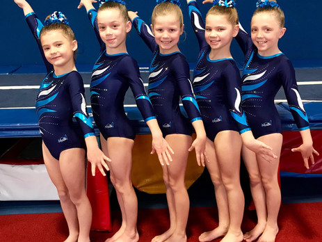PIT Gymnasts Secure Success at WAG Metro North Qualifiers & Grips Invitational
