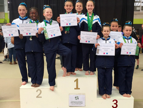 PIT Gymnasts Tackle Tasmanian State Championships