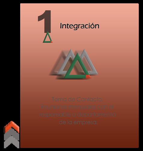 gráfico integración a la empresa
