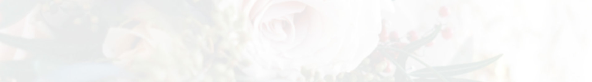 web para bodas.jpg