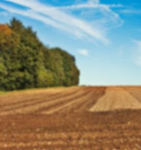 tierra arada con gradas