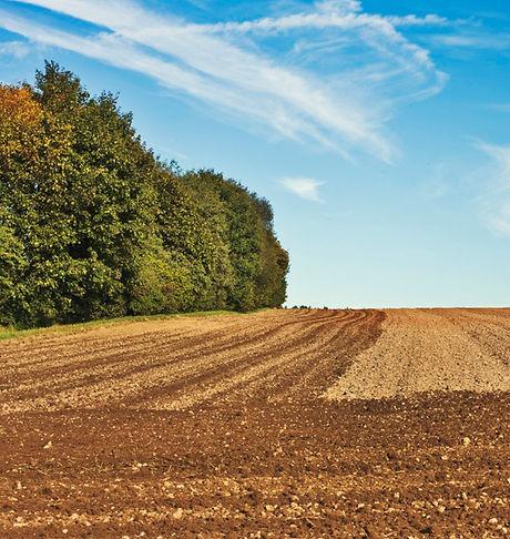 campo arado con gradas