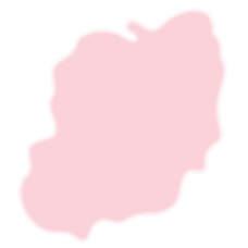 cnxs-slodge-1-pink-light.png