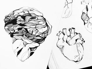 illustration-croquis-coeur