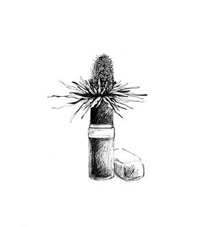 illustration-rouge-a-levre-chardon