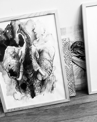 illustration-éléphant