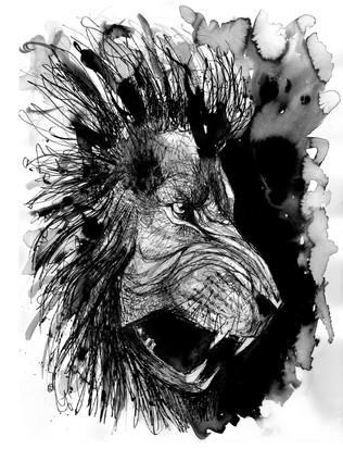 illustration-lion