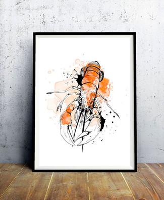 Affiche-illustration-homard-aquarelle