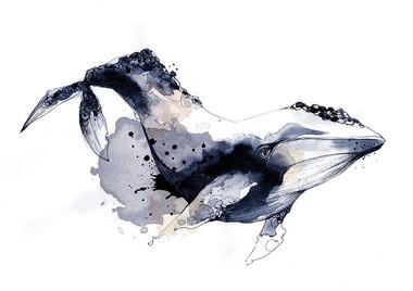 illustration-baleine
