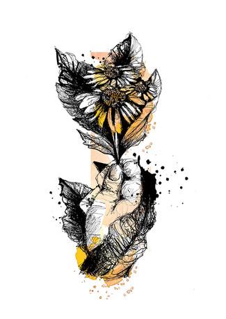Affiche-illustration-marguerites
