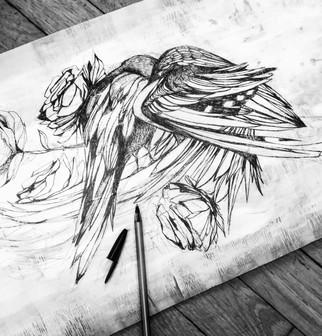 illustration-bois-oiseaux