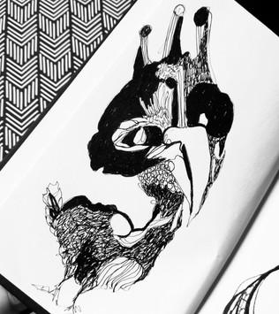 illustration-coq