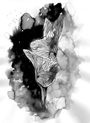 illustration-aquarelle-fleur
