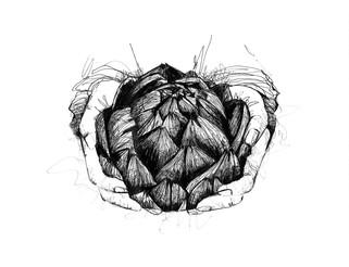 illustration-artichaud