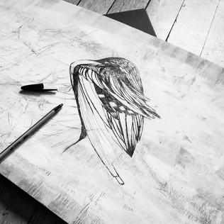 illustration-planche-de-bois-oiseaux
