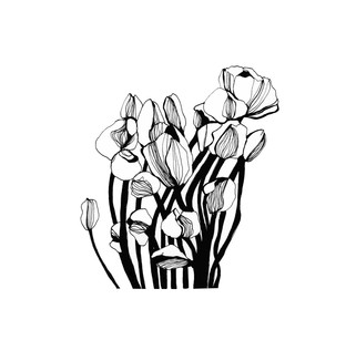 illustration-fleurs-graphiques