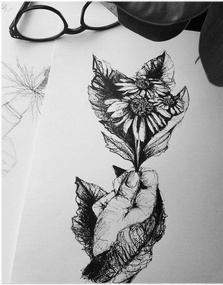 illustration-croquis-tournesol